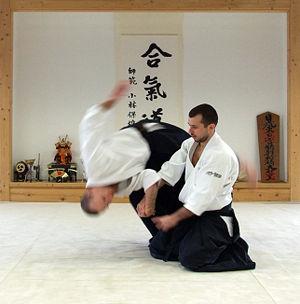 aikido 10 Beladiri utama di dunia